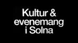 logo_solnaev